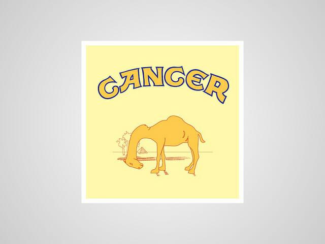 6-Camel