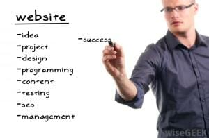 what does a web developer do